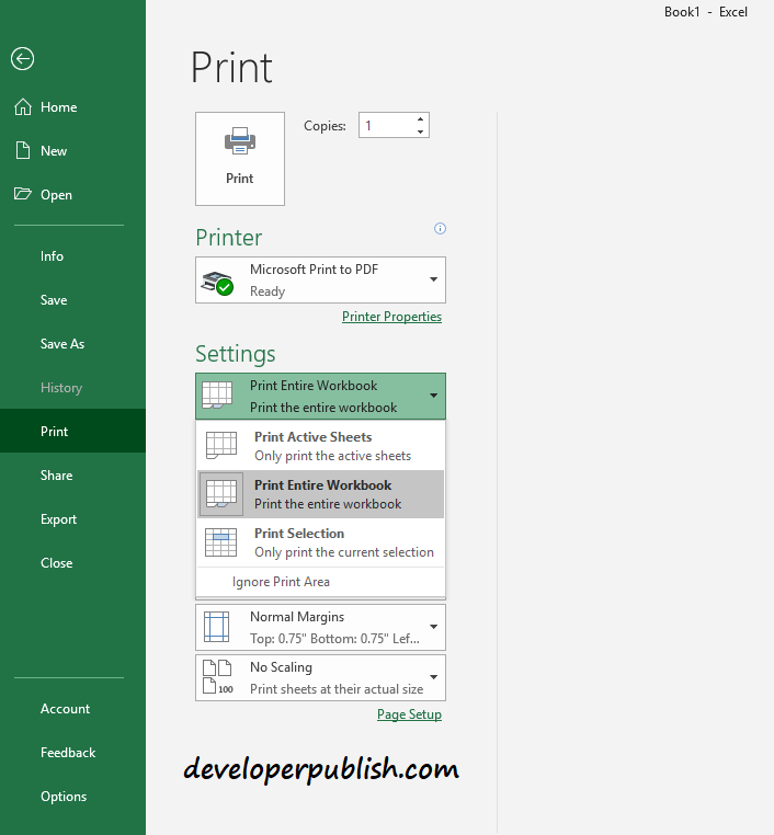 How to print a worksheet or a workbook ?