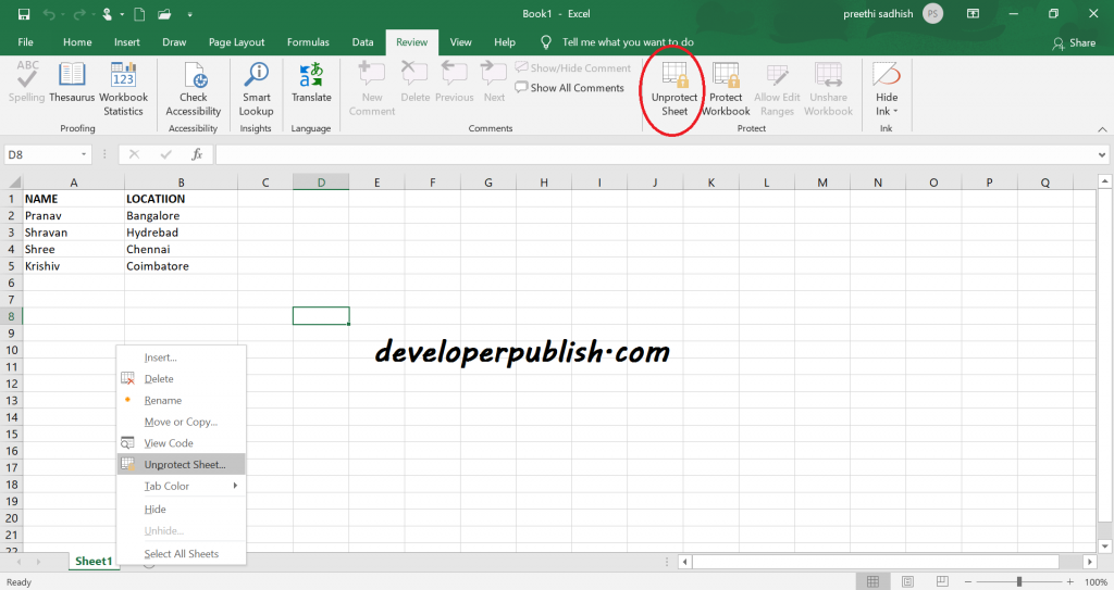 Protect Sheet in Microsoft Excel