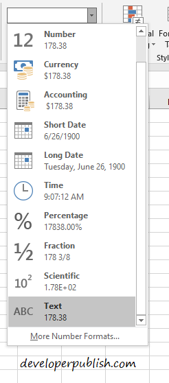 Numbers to Text Formatting in Excel