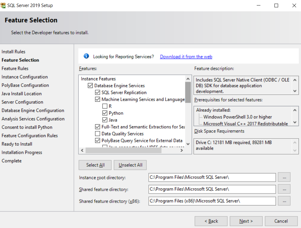 Download & Install SQL SERVER 2019 Developer Edition for free
