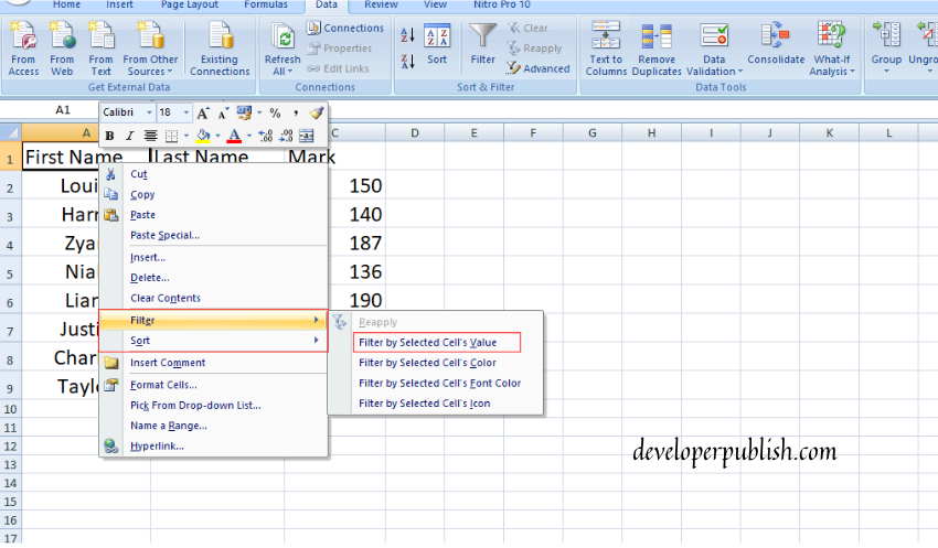 Number and Text Filters in Excel