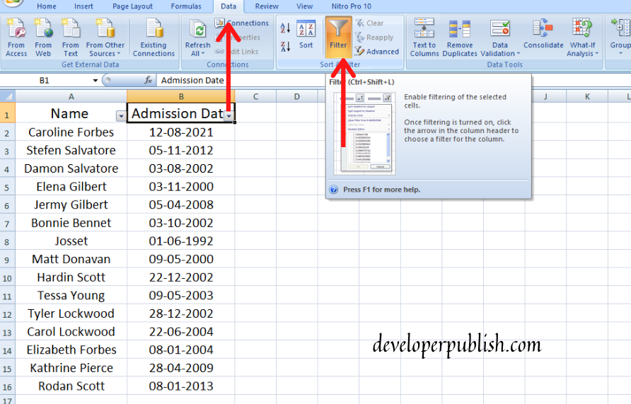 How to use Date Filters in Excel?