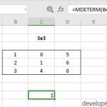 MDETERM Function in Excel